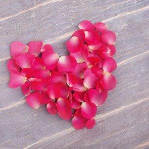 rosenblaetter1920